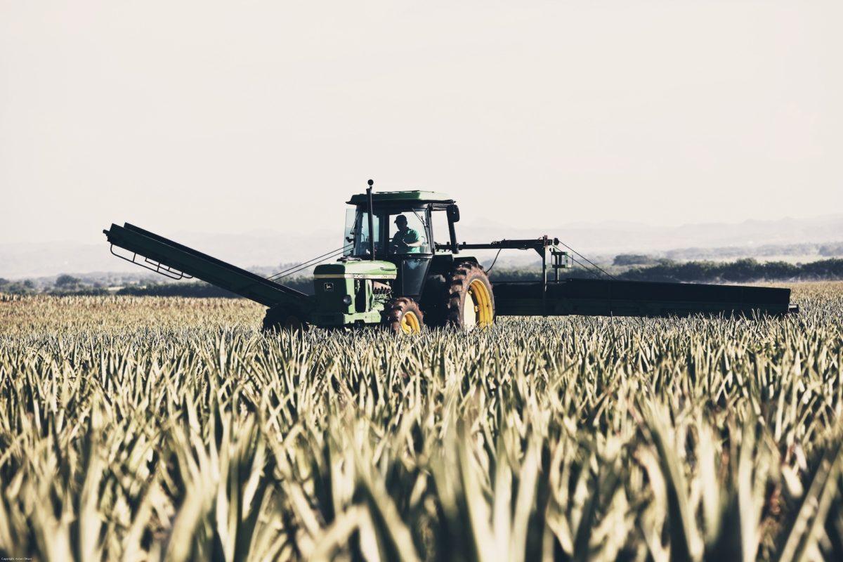 Rumunia, VAT i ciągniki rolnicze