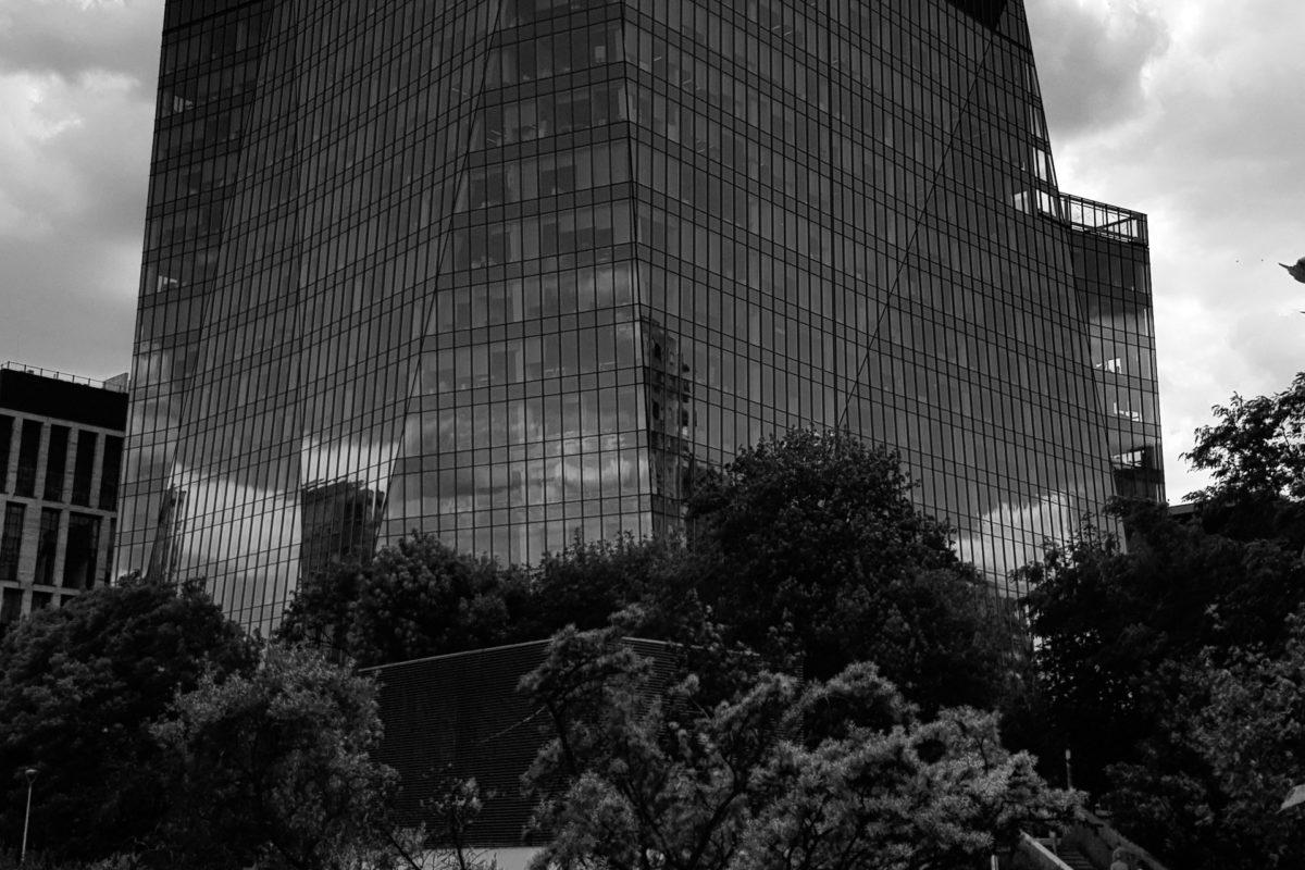 Sprawa MGM S.A., czyli oskarżenie o udział w karuzeli VAT i działania aparatu skarbowego